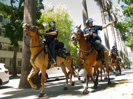 Police Ride Horses on the Sidewalk