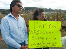 Driscoll's negotiate in good faith with the farmworkers of San Quintín