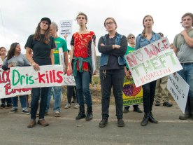 Dris-kills: No Wage Theft