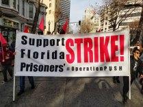 Support Florida Prisoners' Strike!