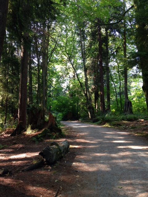 5 Reasons Why Vancouver is the Best Running City