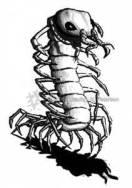 ci_centipede
