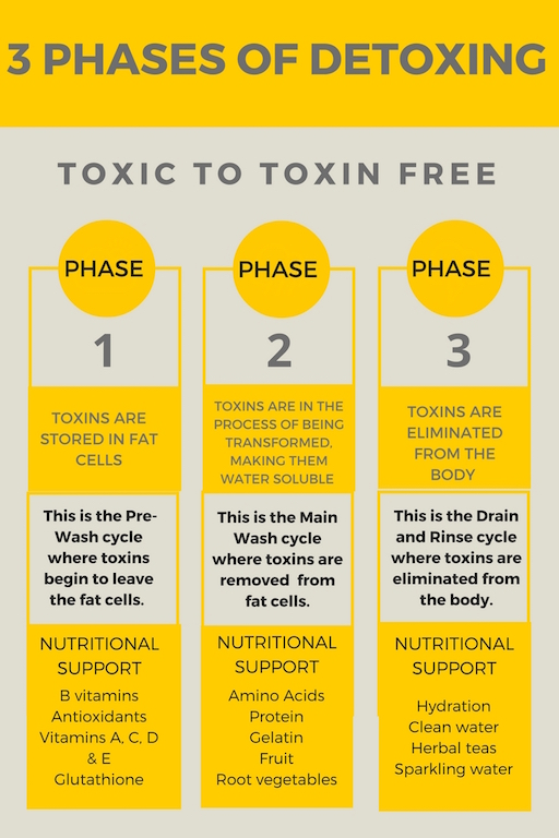 This infographic highlights the three phases of a detox and what happens in the body and what nutritional support is needed.