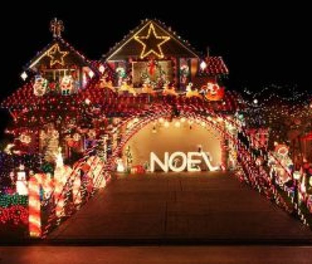 Hologram Christmas Lights Diy Outdoor Christmas Tree Fresh Buyers Guide For The Best Outdoor