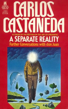 A_separate_reality