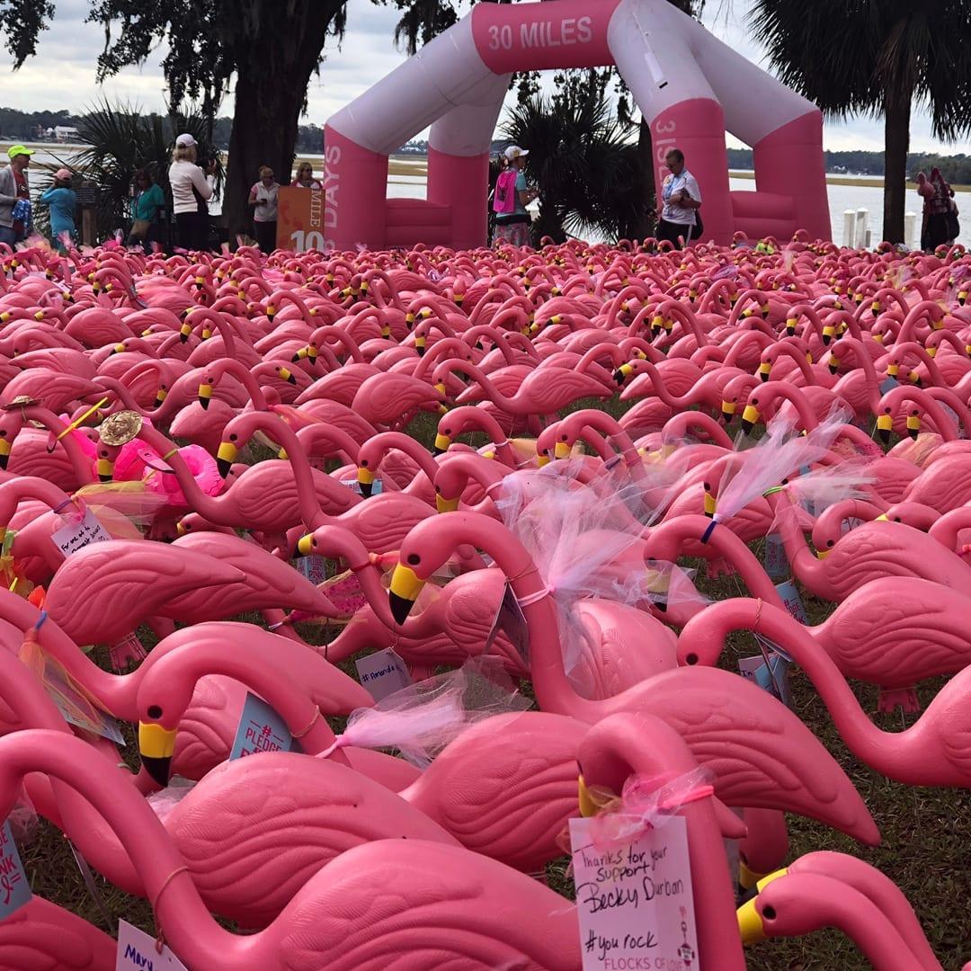 Pledge The Pink Breast Cancer Walk/Run