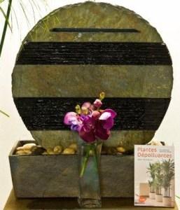 Fontaines et plantes, par Infinite Love