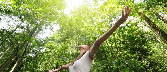 Kirtan, bhakti yoga par Lena Frey, le 12-12-12 à 12:12