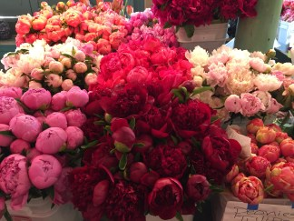 Flowers at Pike Place Market (Beautiful!)