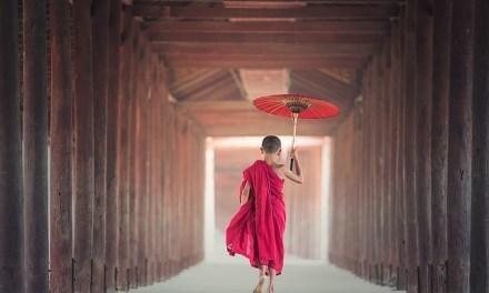 Conversation With the Twenty-Eighth Buddha