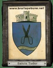 Comuna Salcia Tudor