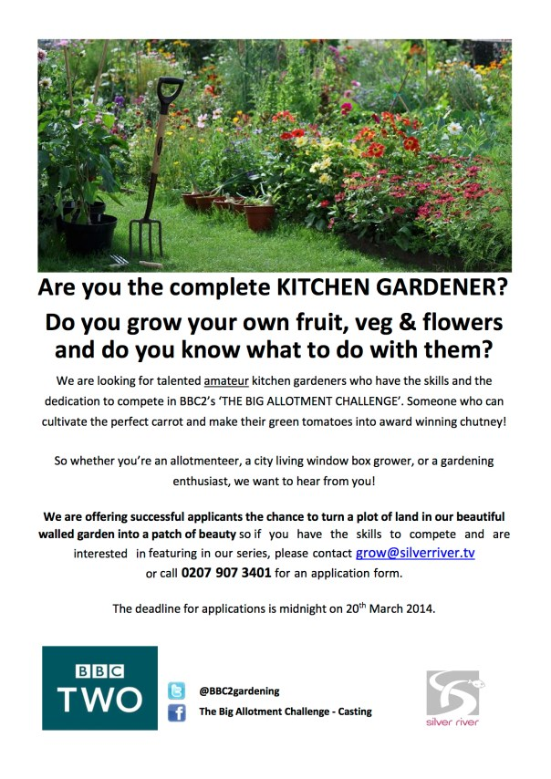 The Big Allotment Challenge Flyer