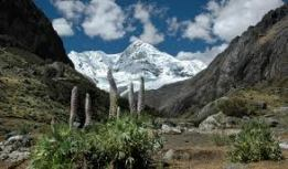 peaks and valleys (7)