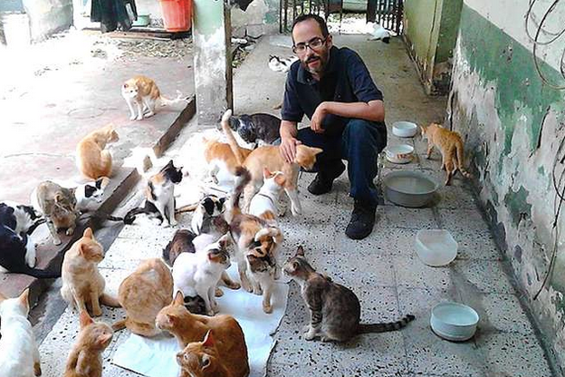 Despite this family losing everything, they continue to rescue abandoned cats