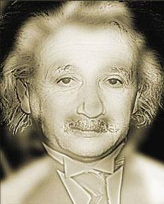 Image result for einstein and marilyn monroe illusion