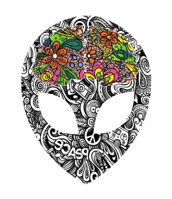 hippy brain logo