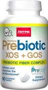 Jarrow Formulas XOS+GOS Prebiotic