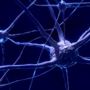 Neuronen ©Colin Behrens (Pixabay)