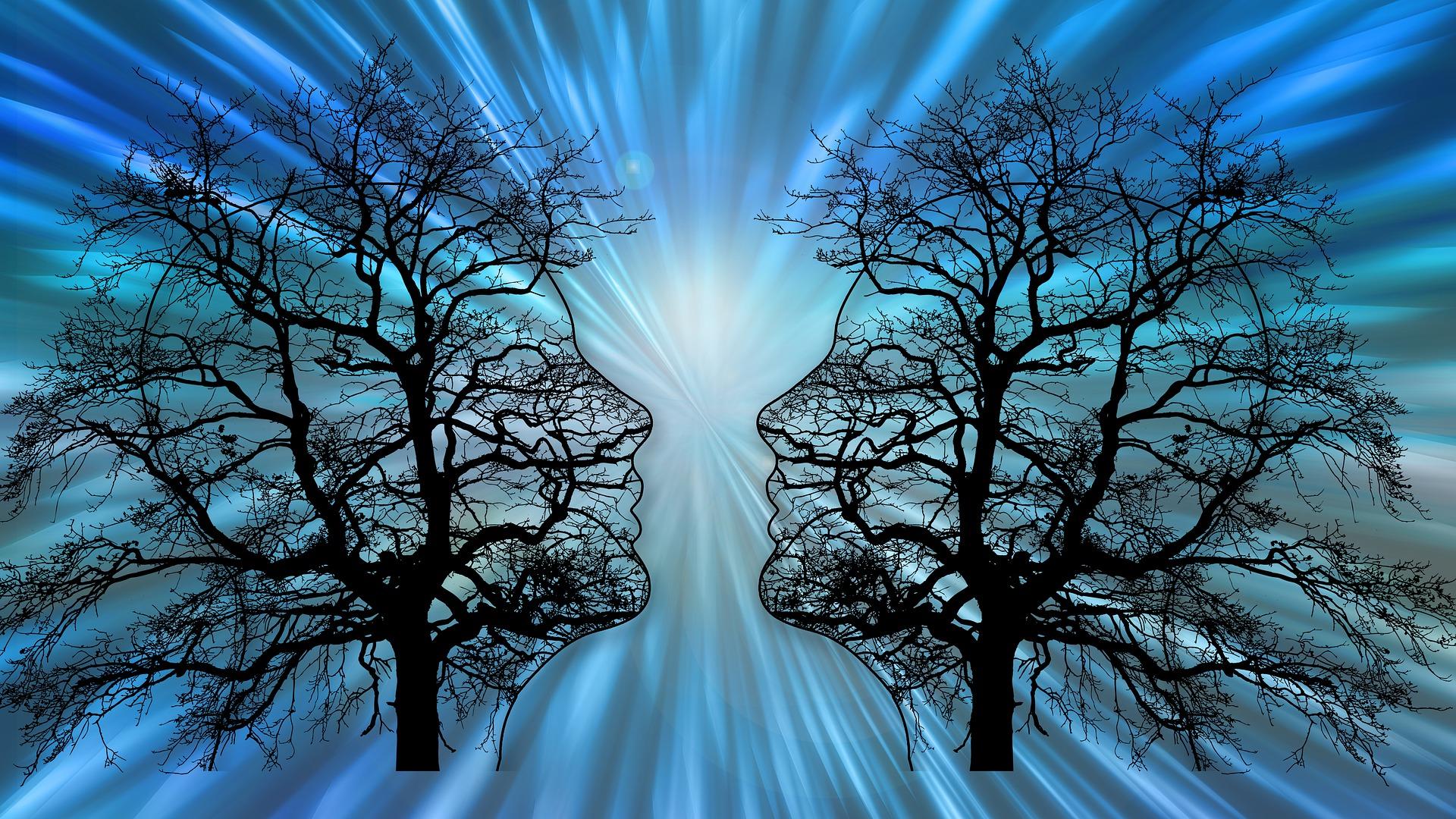 trees-6361892_c_gerd-altmann_pixabay