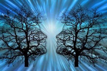 Silhouetten zwei Köpfe mit Bäumen symbolisch für Neuronenverbindungen im Gehirn