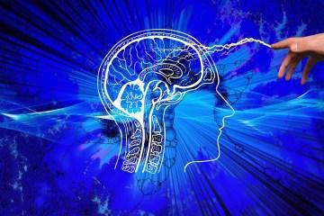 Illustration - Kopf im Profil und dargestellten Gehirn