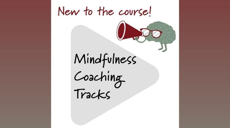 Brain over Binge Mindfulness Coaching