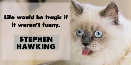 Stephen Hawking inspirational quote