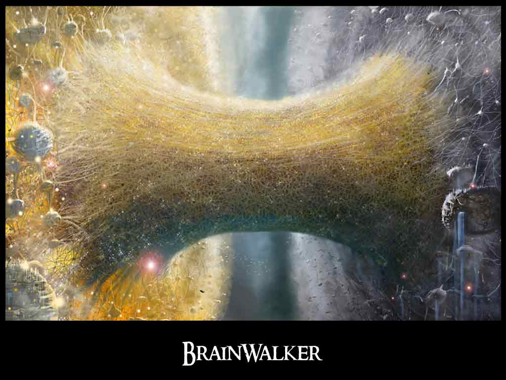 brainwalker-book-corpus-callosum-great-arc