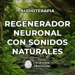 AUDIOTERAPIA «REGENERADOR NEURONAL CON SONIDOS NATURALES» (30MIN)