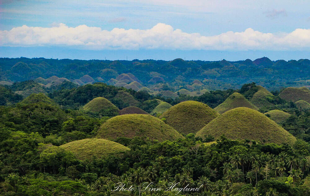 Chocolate Hills is one of the best things to do in Bohol