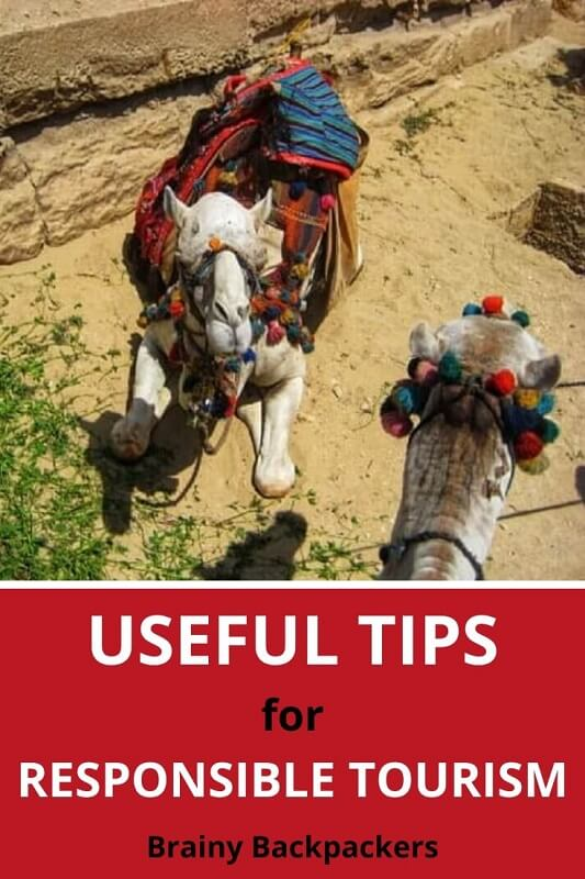 Looking for useful tips for responsible tourism? This post is packed with simple steps you can use on your next trip! #responsibletourism #traveltips #brainybackpackers #sustainabletravel #mindfultravel #travel