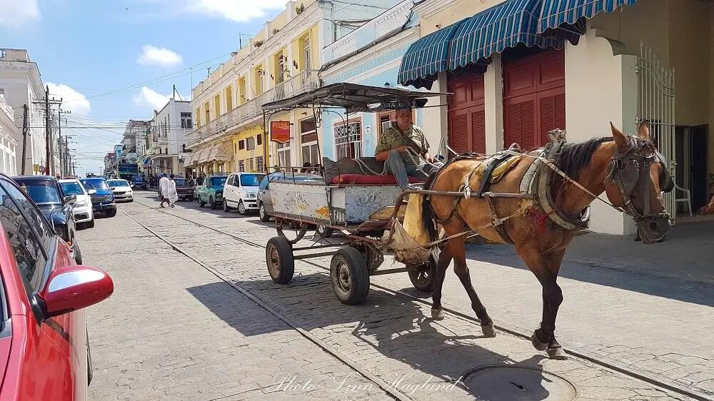 Horse carriage in Trinidad