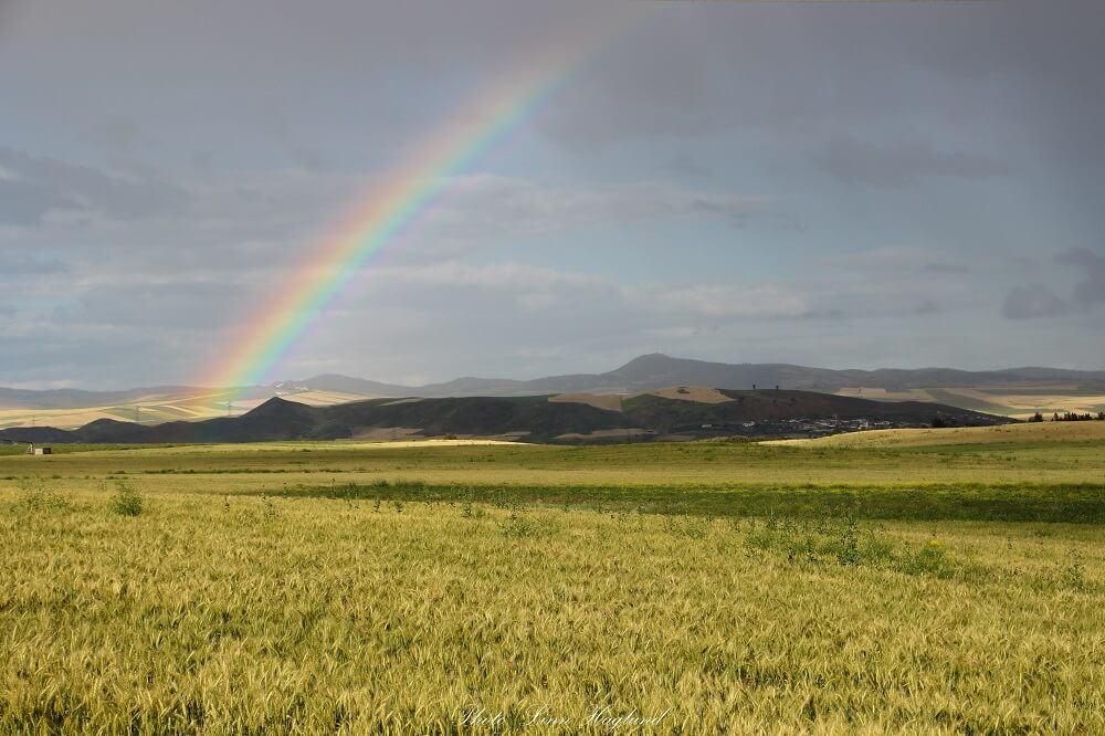 A beautiful rainbow on our Morocco 1 week itinerary. Spring is best time to travel to Morocco when the fields are golden.