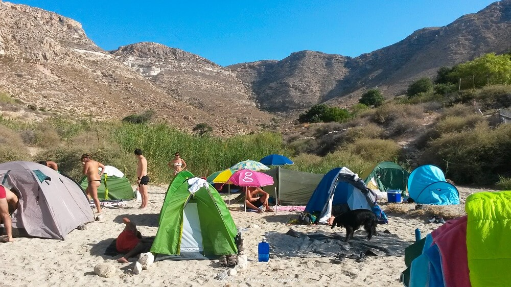 How to pick a pet friendly tent camping with a dog