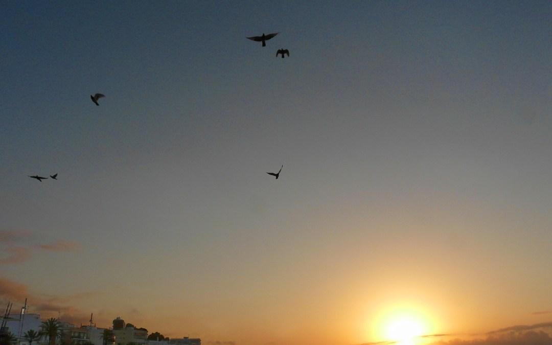 Sunrise in Canet de Mar