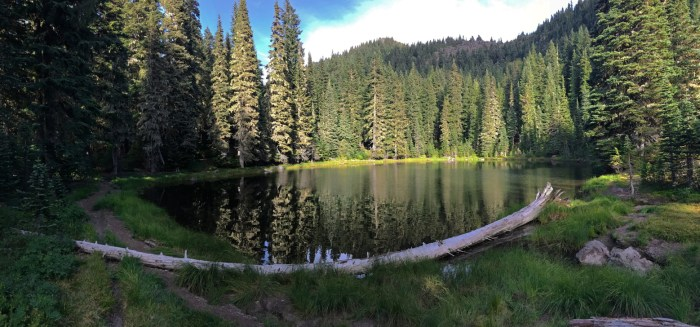View of Wood Lake surrounded by tall firs in the Indian Heaven Wilderness