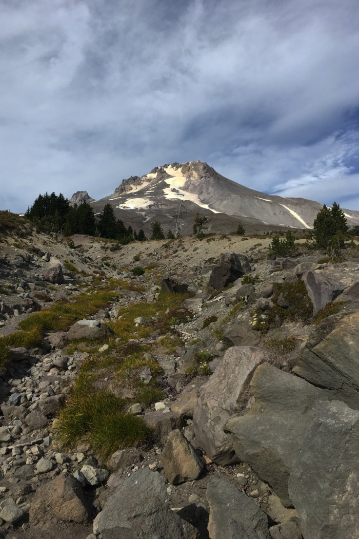 View of the top of Mt. Hood from the Pacific Crest Trail