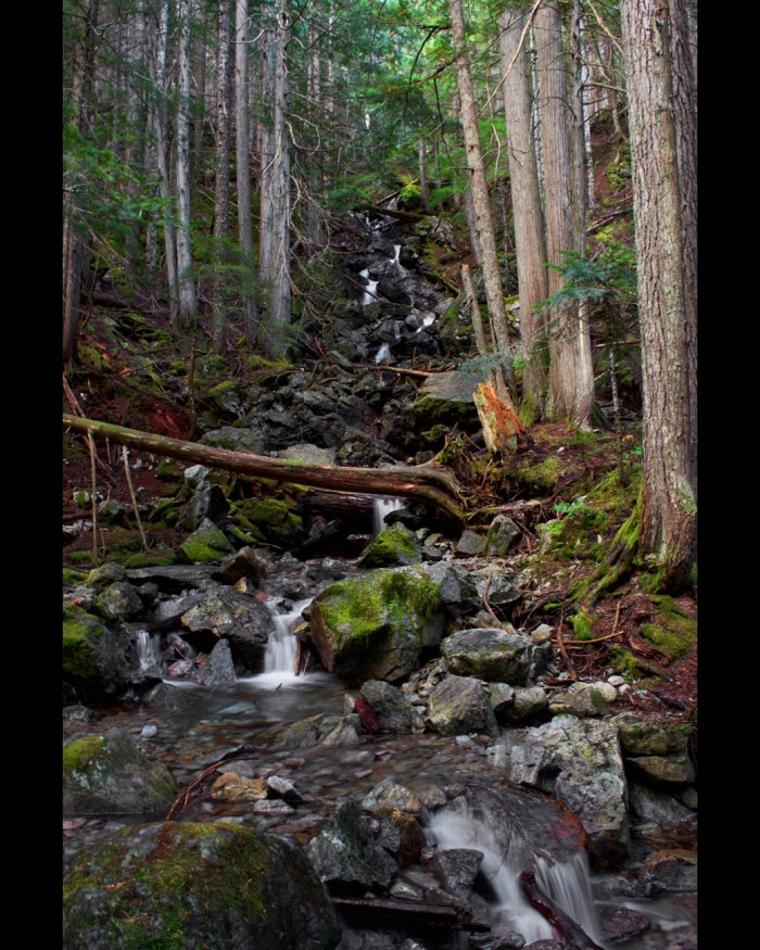 Multiple-level falls cascading over rocks on Happy Creek