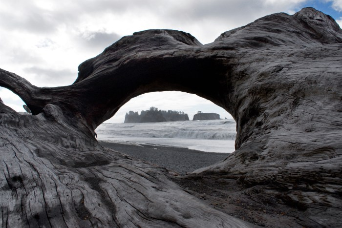 James Island as seen through the hole in some driftwood at Rialto Beach