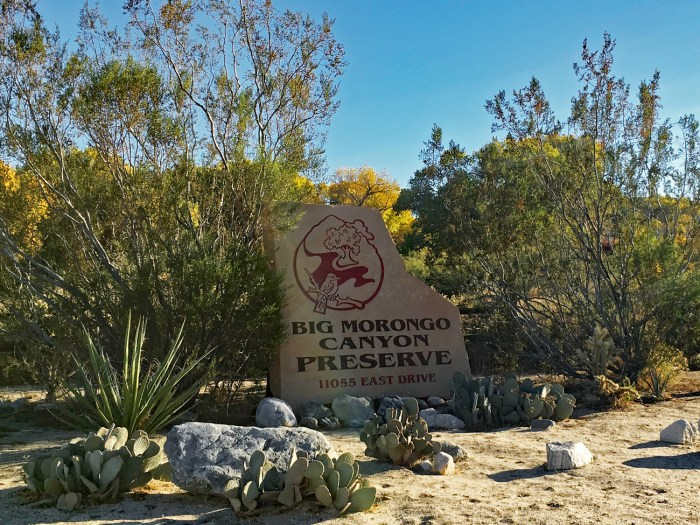 Sign at Big Morongo Canyon Preserve surrounded by desert plants