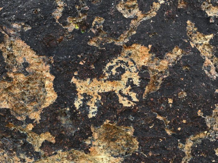 Petroglyph of a bighorn sheep near Hole-in-the-Wall Visitor Center