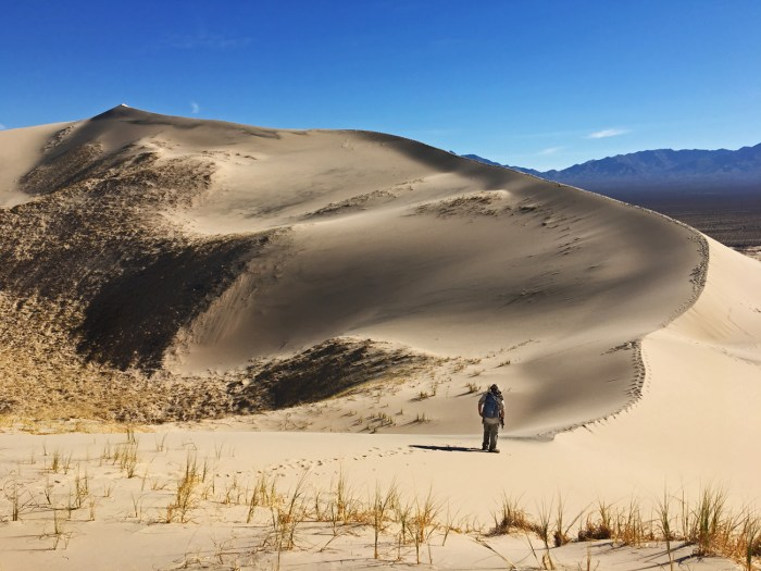 Michael about to start hiking the ridge of one of the dunes towards the peak, contemplating the vastness of the dunes