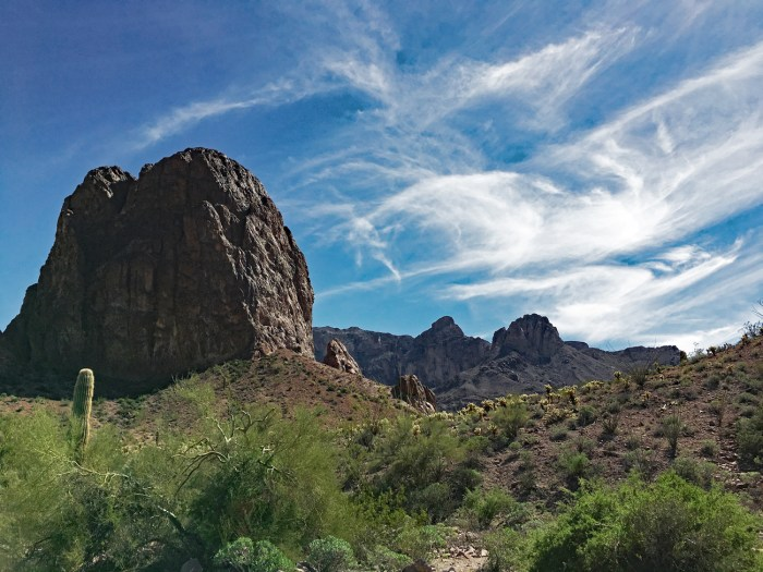 Dark brown rock formations and bright green desert vegetation in Kofa Queen Canyon