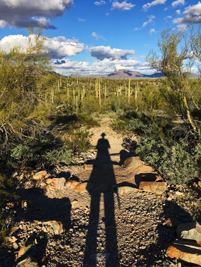 Christina's shadow stretching out onto the Victoria Mine Trail with the desert glowing in the evening light