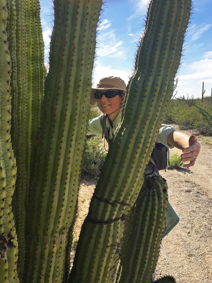 "Christina attempting to ""hug"" an organ pipe cactus"