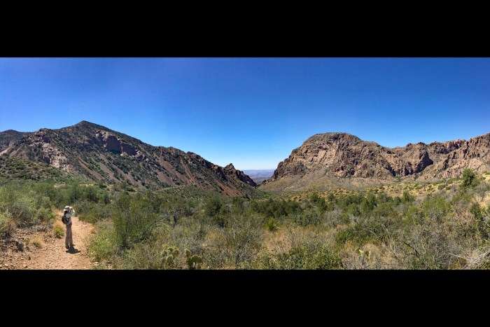 Panorama of the Chisos Basin from the Basin Loop trail in Big Bend National Park