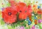 wildflower summer for ramm t