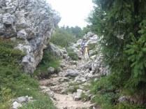 2013-agosto-sassolungo 099 (1280x960)