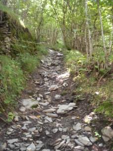 2014-Alpe-Orocco 010 (768x1024)