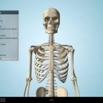 تحميل برنامج  جسم الانسان 3 d
